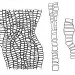 sbsma anabella drawings